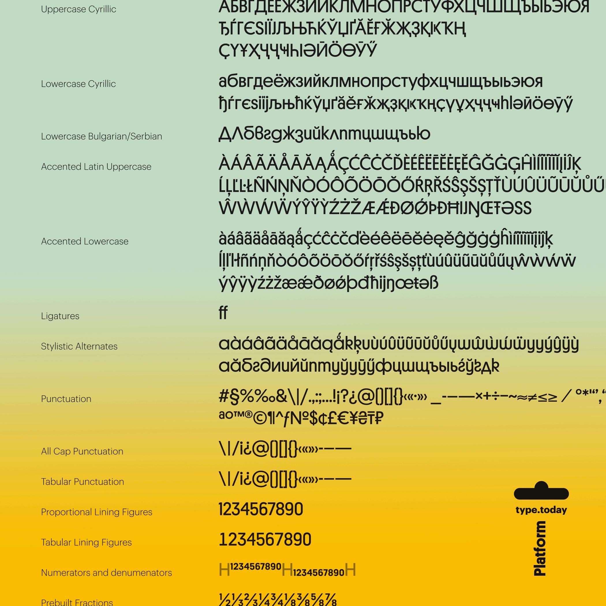 tt_Platform_06