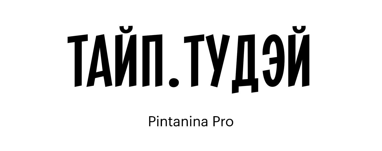 Pintanina-Pro
